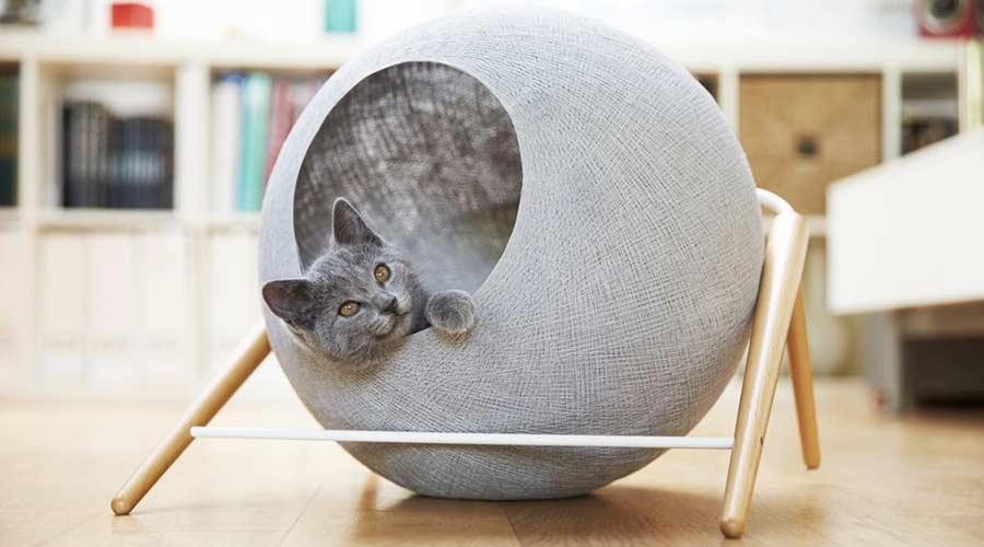 Meyou no mercado PET: Mobiliário de gato se misturará aos interiores modernos
