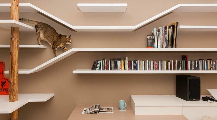 Thinking Design, Taiwan, projetou apartamento focado na coabitação entre humanos e felinos