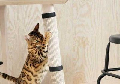 Equipe de design da IKEA trabalhou junto com veterinários para projetar móveis acessíveis e agradáveis para cães e gatos. Outras marcas já olham para o mercado PET